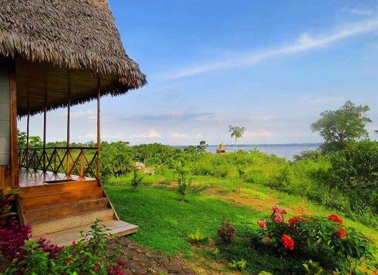 Ayahuasca Retreat Peru Healing and Spiritual Growth - Flower